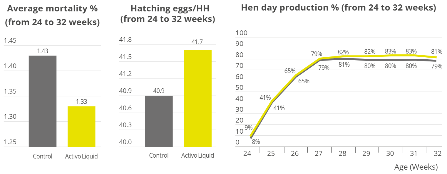 Performance results from Cobb broiler breeders, Activo liquid supplementation vs. control